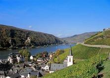 3-Tage-Weinfest-am-Rhein