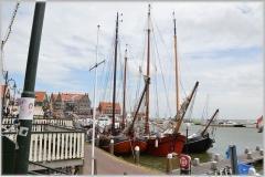 holland-214156_640